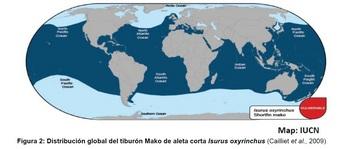 アオザメ分布図.jpg